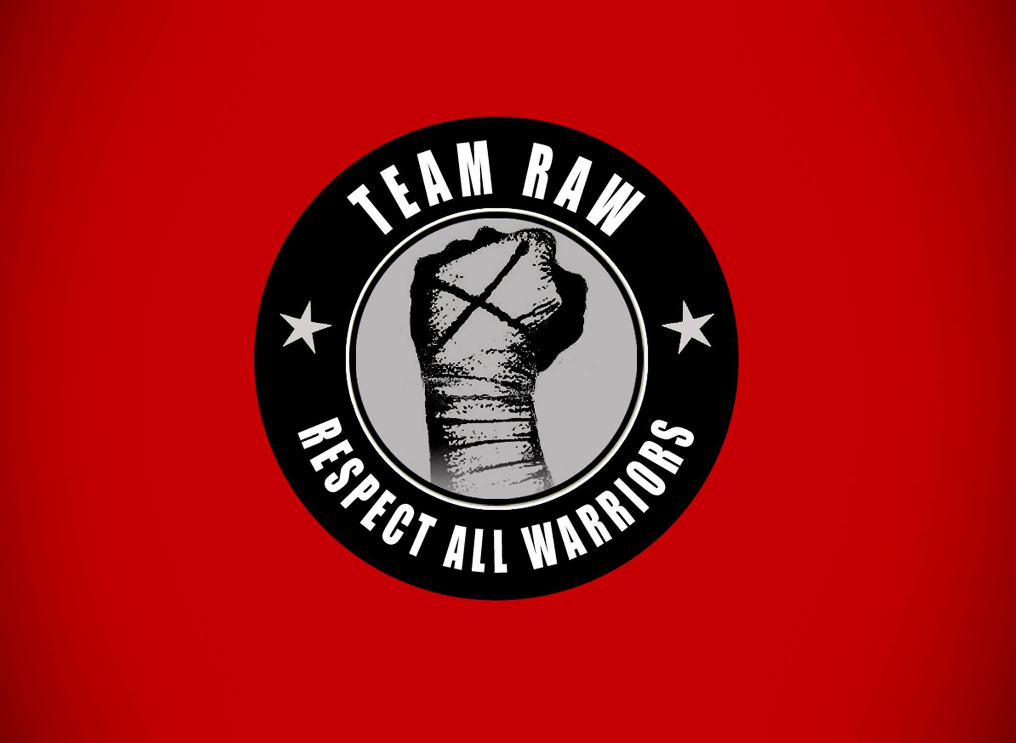 Vejle taekwondo logo
